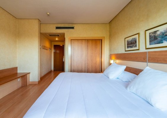 Superior room with terrace hotel faranda florida norte madrid